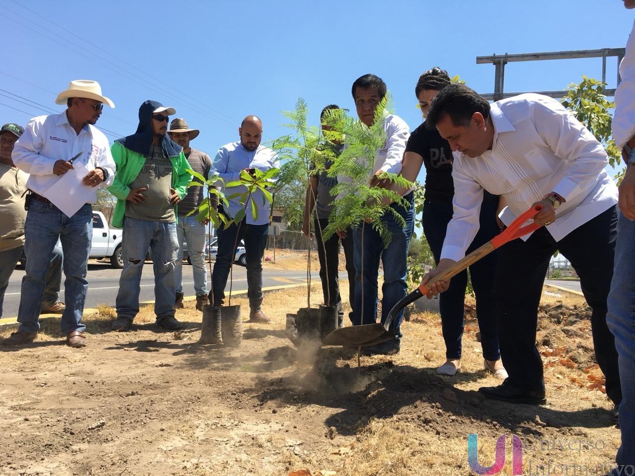 Arranca campaña permanente de reforestación