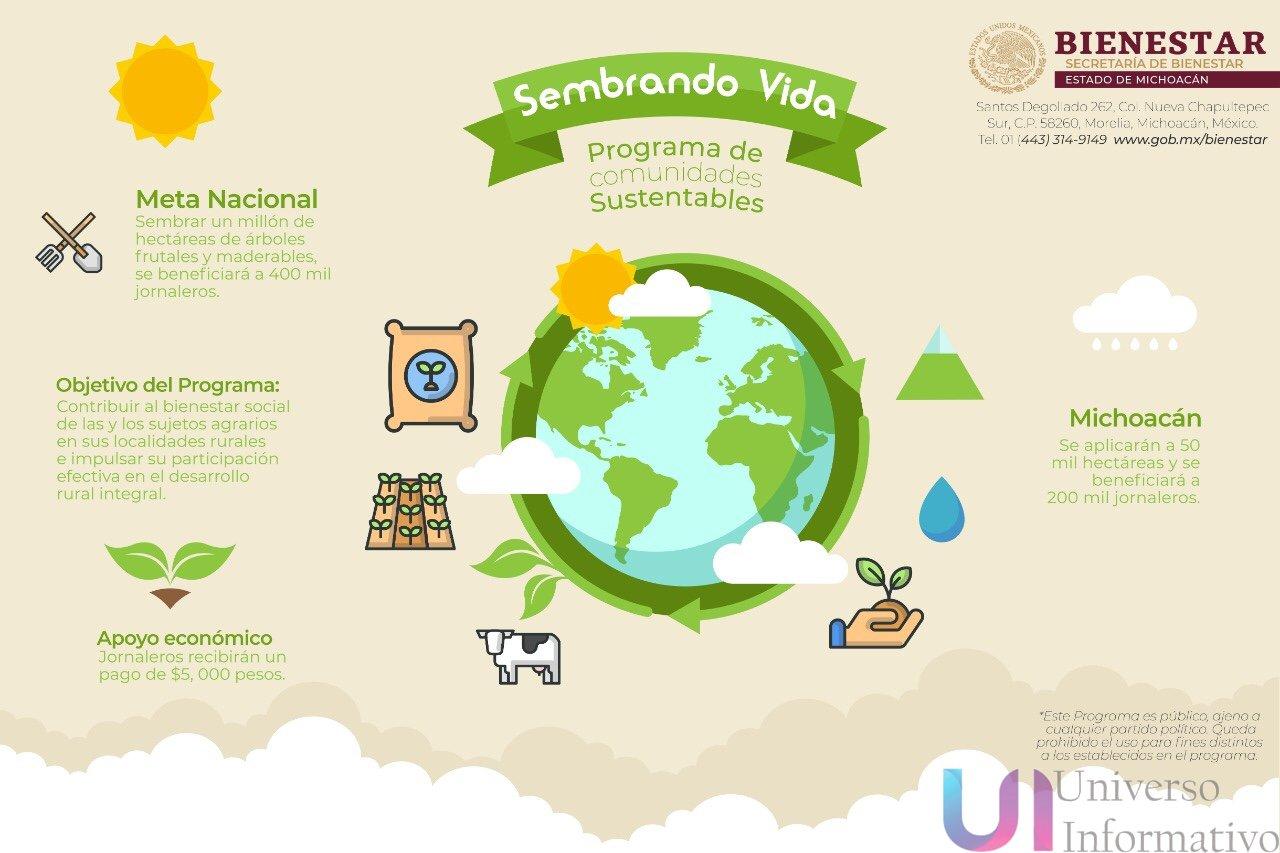 *Se implementará el programa Sembrando Vida en Michoacán*