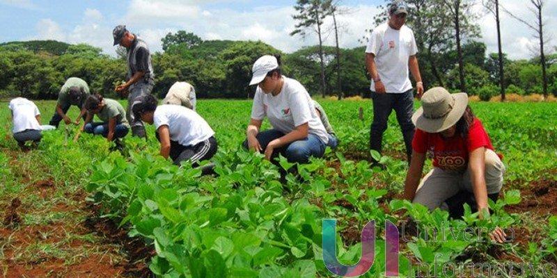 Para consolidar la organización rural, se destinan 12 mdp: Sedrua