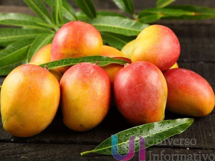 Exportó Michoacán casi 89 mil toneladas de mango: Sedrua