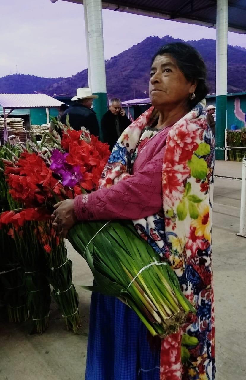 Michoacán, cuarto productor nacional de gladiola: Sedrua