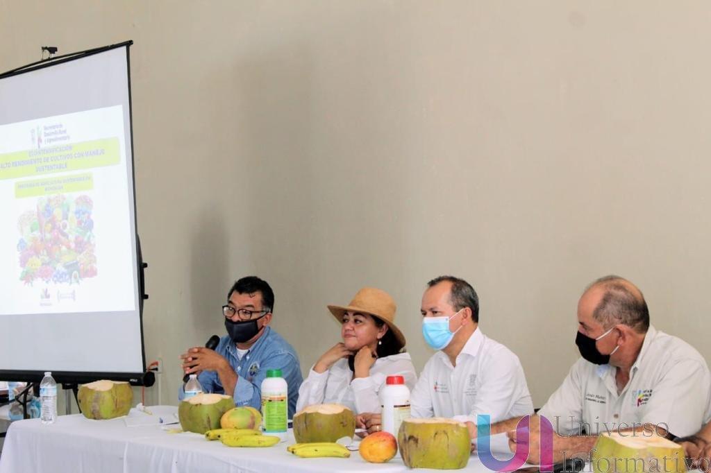 Coco y plátano de LC se incorporan a la Agricultura Sustentable.