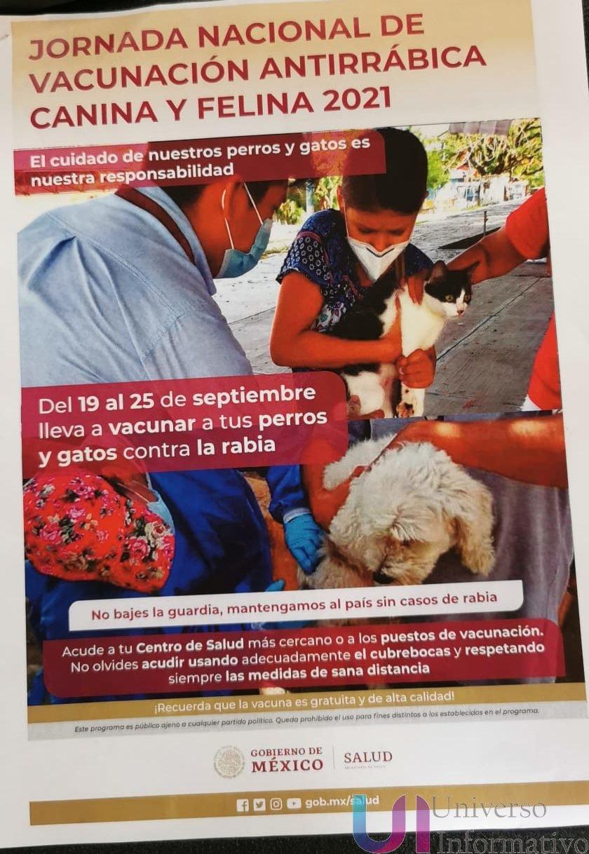 Invitan a vacunar a mascotas la próxima semana